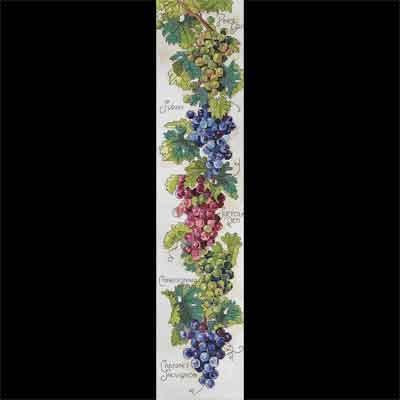 сорта винограда»