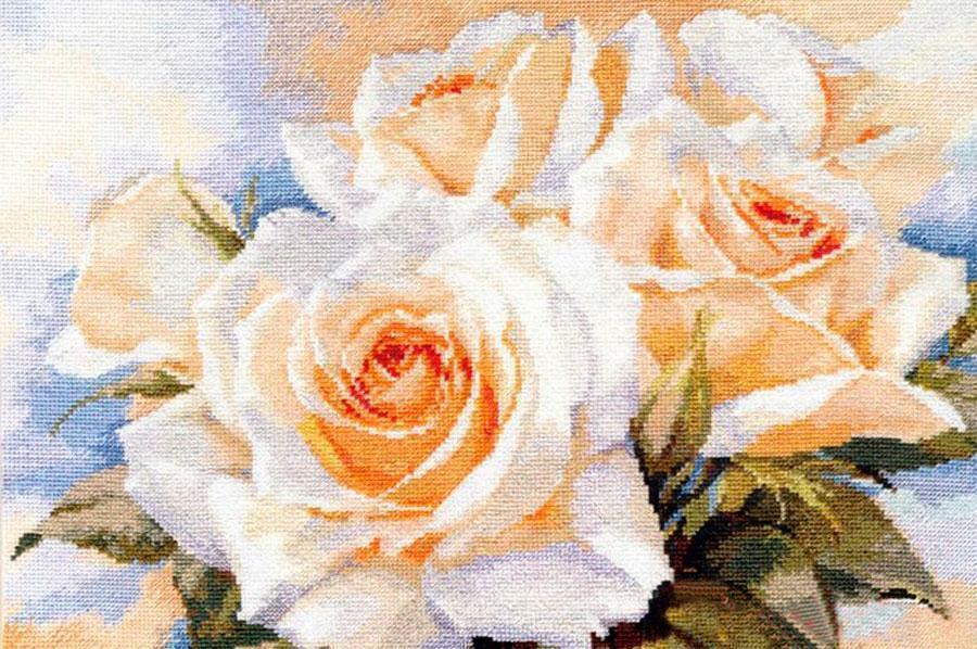 Схема вышивки алиса белые розы 88